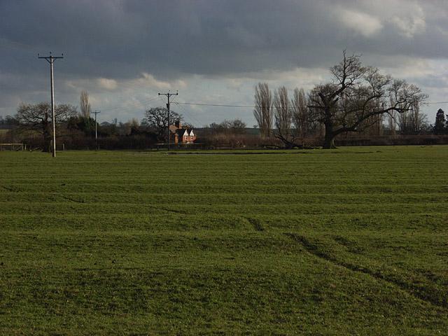 Pastures, White House Farm