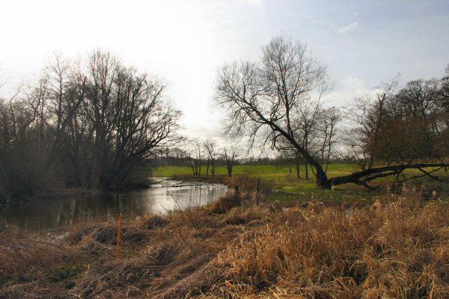 River Thet at Brettenham