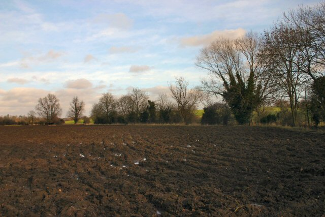 Ploughed field near Thelnetham