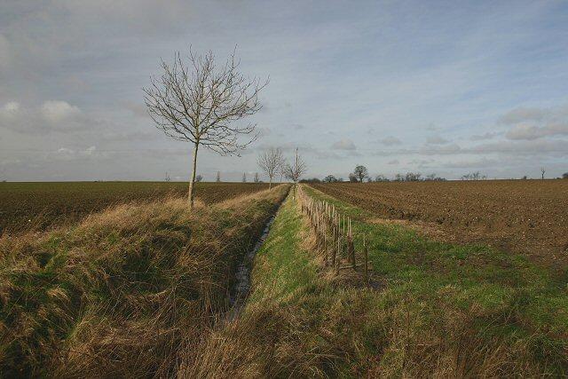 Fields and ditch near Thelnetham