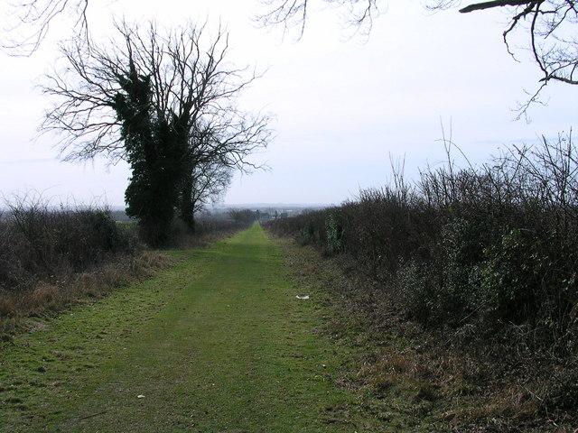 Roman Road along Copley Hill (Tumulus)