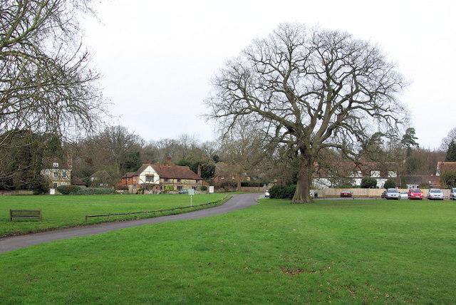 Fernhurst Green