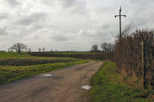 Track to Stone Hall, Wattisfield