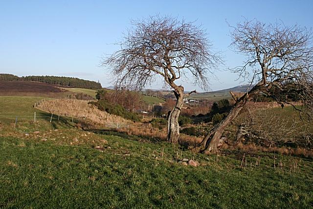 Cottarton of Broadfield