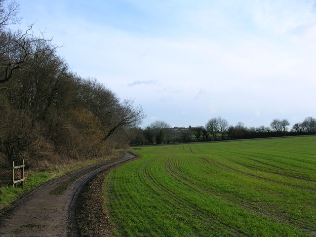 Footpath past Ricketts Farm