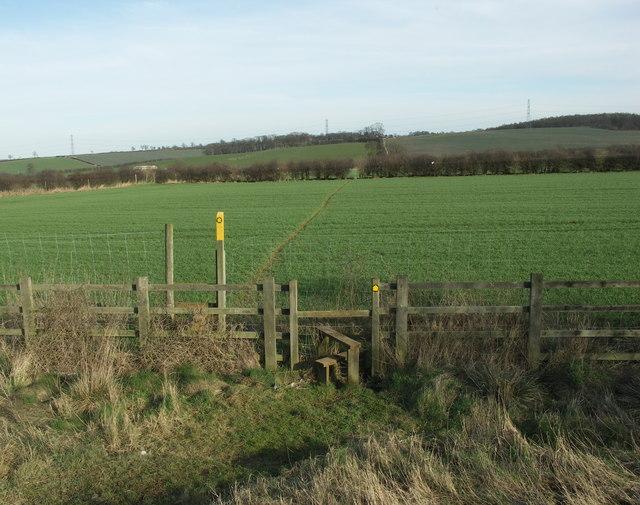 Footpath across open Fields.