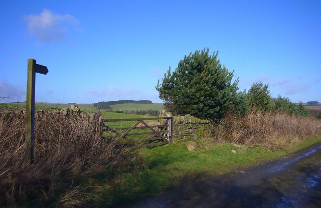 Footpath across Pasture to Stonecroft