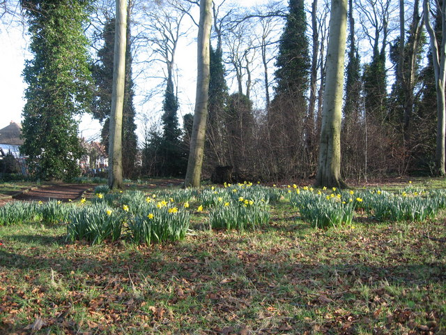 Spring in the Blackwoods, Woolton