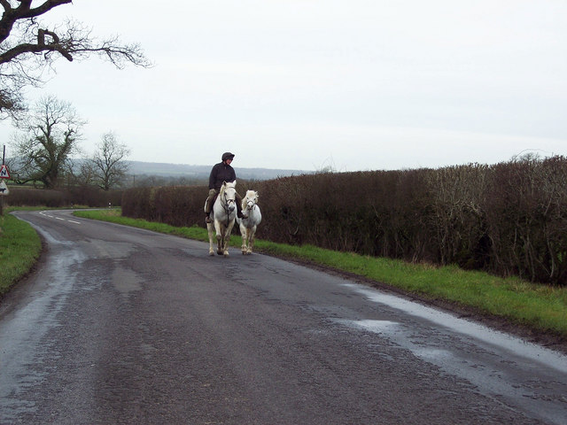 Ride and lead near Larkinglass Farm