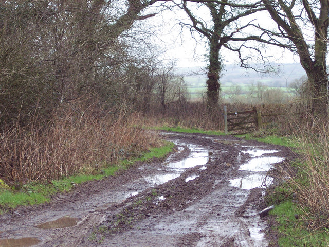 Bridleway to Lower Park Farm from Wise Lane