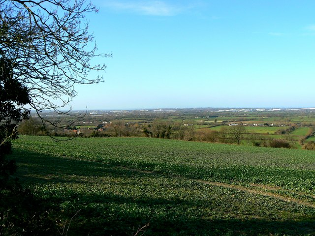 View from Callas Hill, Wanborough (2)
