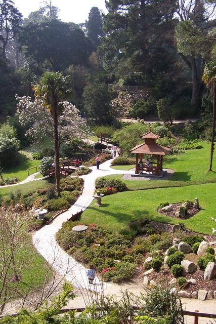 Japanese Garden, Powerscourt, County... © Peter Gerken Cc
