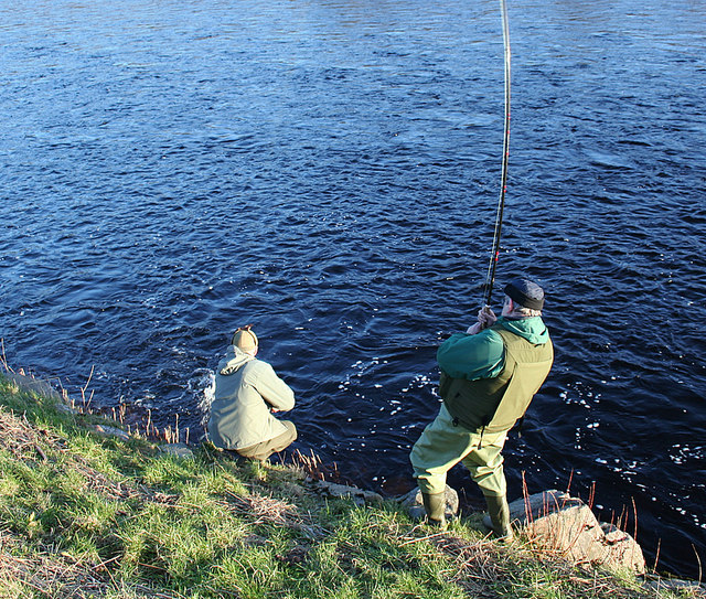 Rothes and Aikenway ghillie nets a fish on the Spey.
