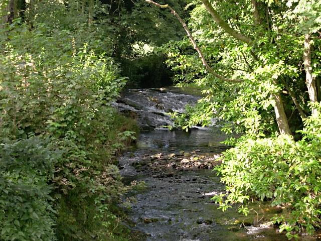 The River Erme from Lower Keaton Bridge
