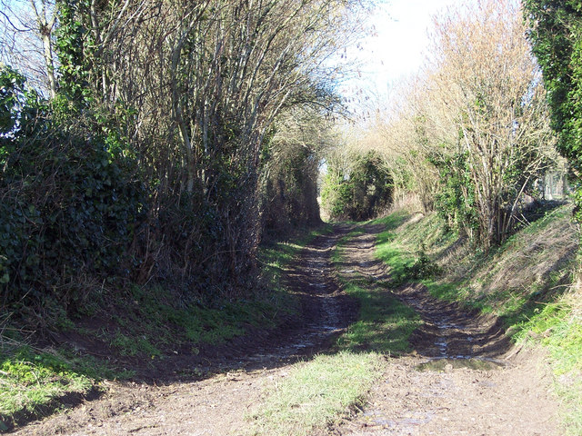 Bridleway to Chilmark from Upper Chicksgrove