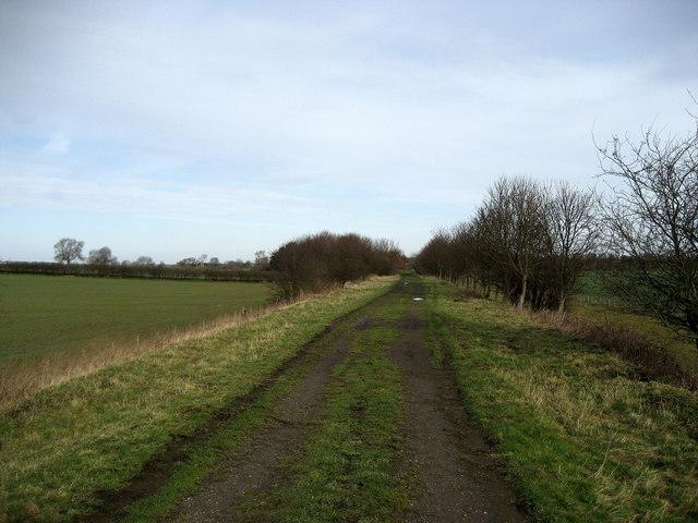 Disused Railway near Maunby