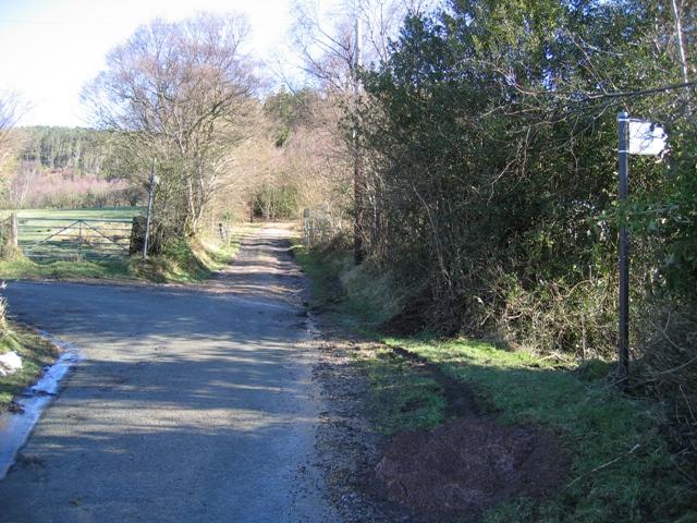 Track and Path Junction near Bwlchgwyn