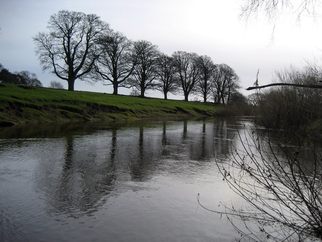 River Swale South of Maunby