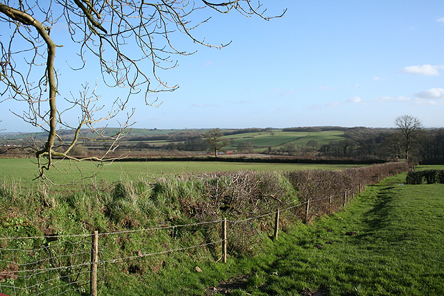 Winkleigh: west of the village