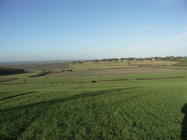 Racecourse View.