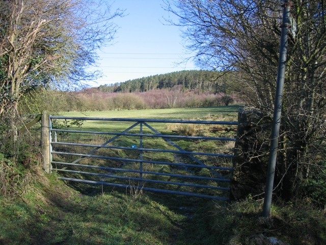 Field Gate and View