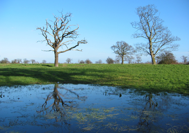 Flooded field, near Woodcott House