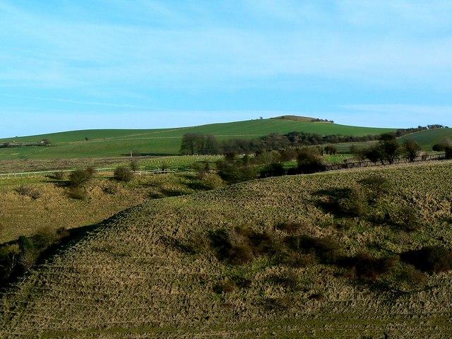 Charlbury Hill from Hinton Parva combe
