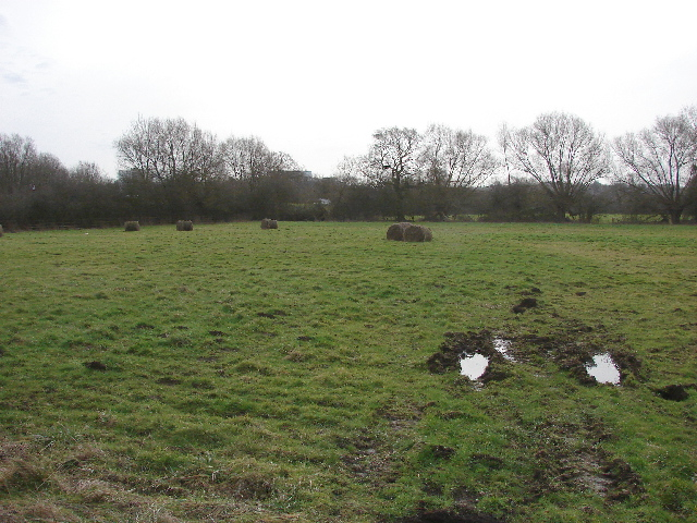 Field in Old Marston