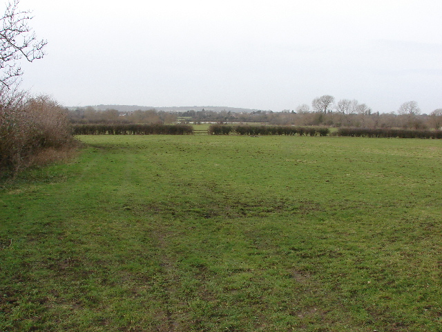 Field by Mill Lane, Old Marston