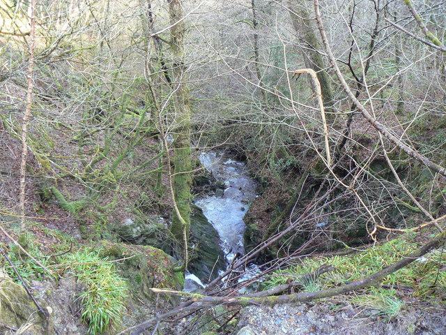 Kilcreggan- Barremman Gare Loch Forestry Track