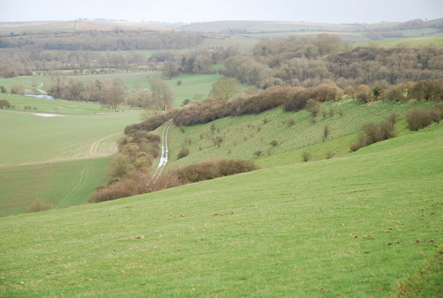 Slopes of Woodlands Down