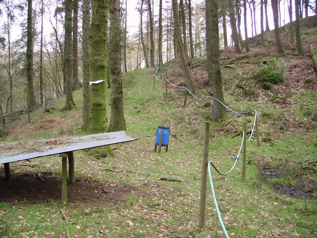 Kirkby Gill Wood