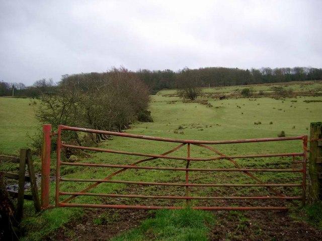 Rough pasture above Darvel