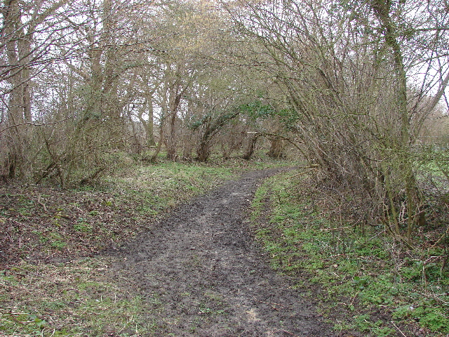 Bridleway from Polecat End