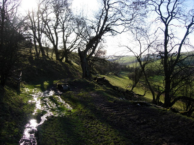 On Offa's Dyke, south-west of Hergan