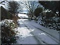 SW6932 : Lane outside Higher Garlidna by Robert W Handley-Fairbairn