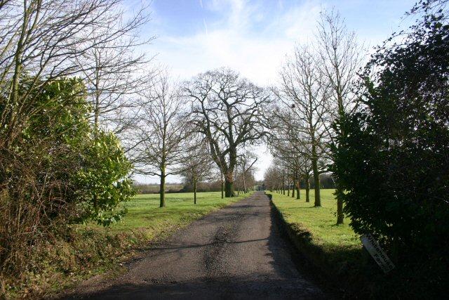 Track to Whitehouse Farm