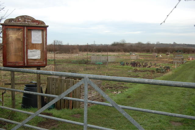 Mill Lane allotments