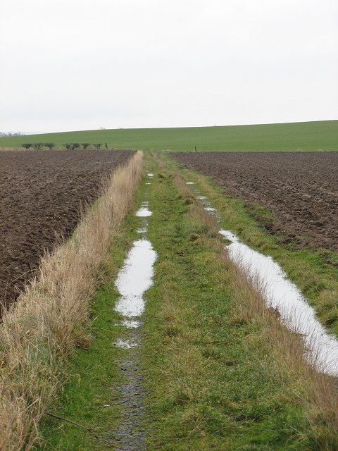 Farm track, Ravelaw