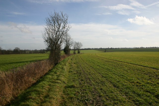 Footpath to Haughley Green