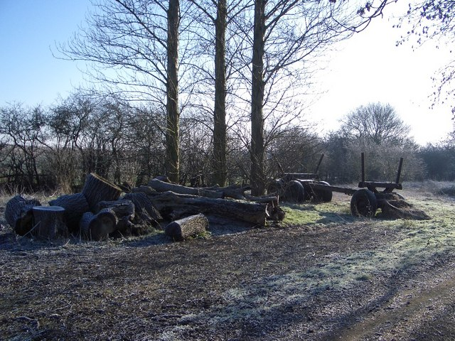 Timber Haulage near Harrold