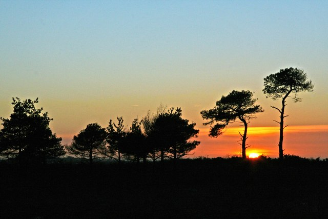 Sunset at Ridley Plain in the New Forest
