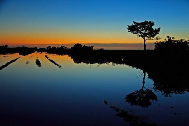 Sunset reflection pool, Handy Cross New Forest