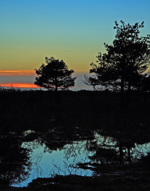 Sunset at water logged Ridley Plain, New Forest