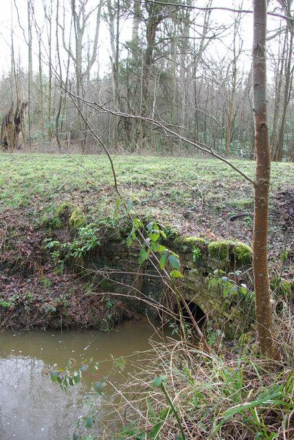 Culvert under Track, Jews Wood