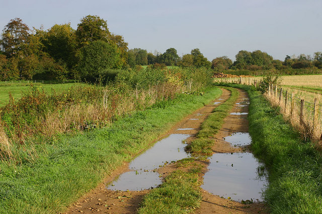 Alvescot trackway near old railway line.