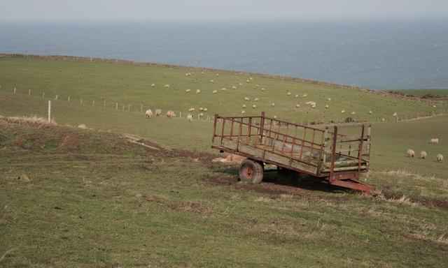 Sheep Pasture, Bottom House