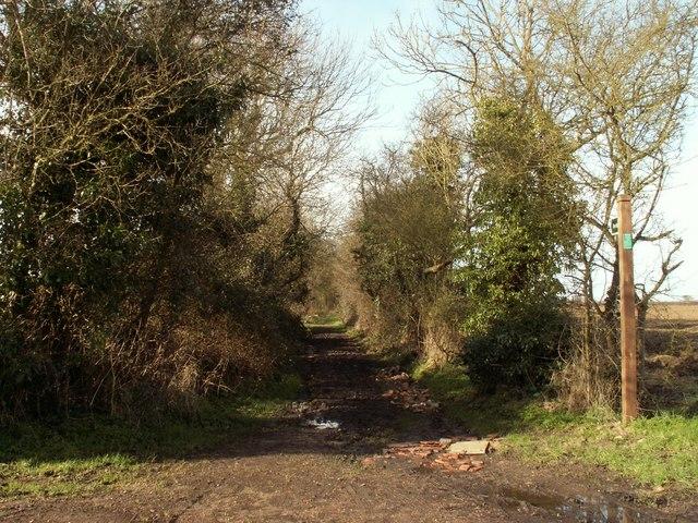 Footpath leading to Rye's Farm