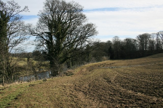 Field on the South Bank of the Tees