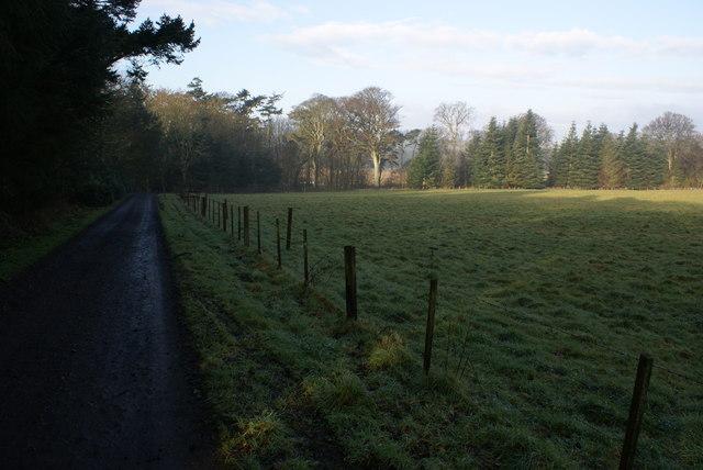 Mordington Pasture